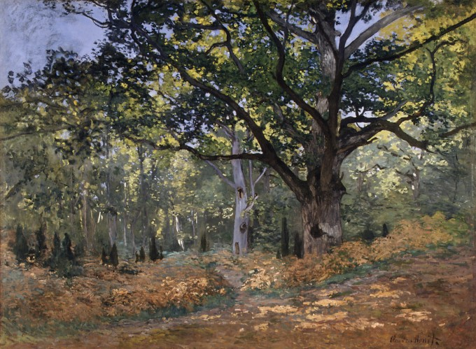 Working Title/Artist: The Bodmer Oak, Fontainebleau Forest Department: European Paintings Culture/Period/Location:  HB/TOA Date Code:  Working Date: 1865 scanned for collections
